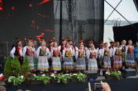 04-koncert-dzien-polakow-za-granica-fot.Teresa-Worobiej